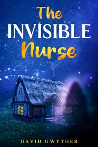 The Invisible Nurse Book Cover
